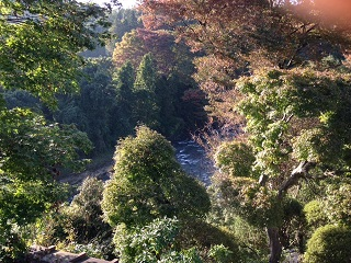 喜寿庵から見た桂川渓谷