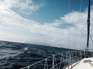 水平線上の御蔵島