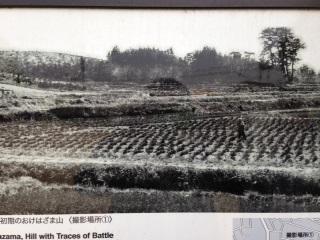 1953年の田楽坪